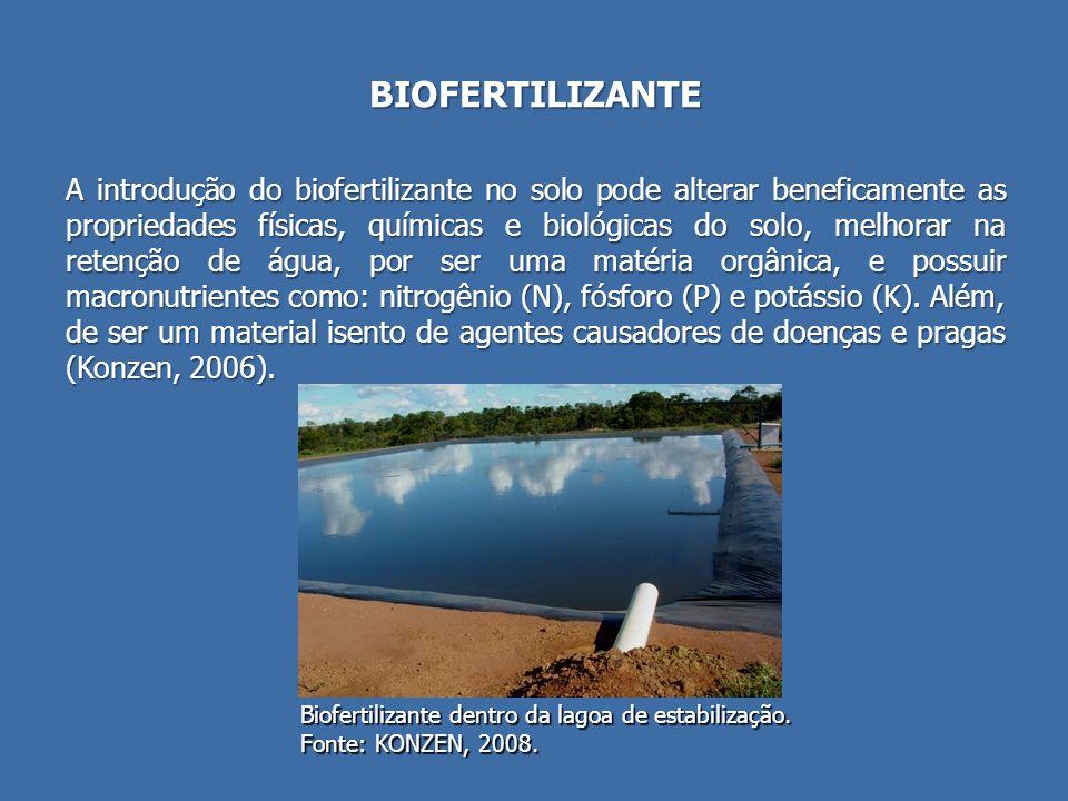 BIOFERTILIZANTE
