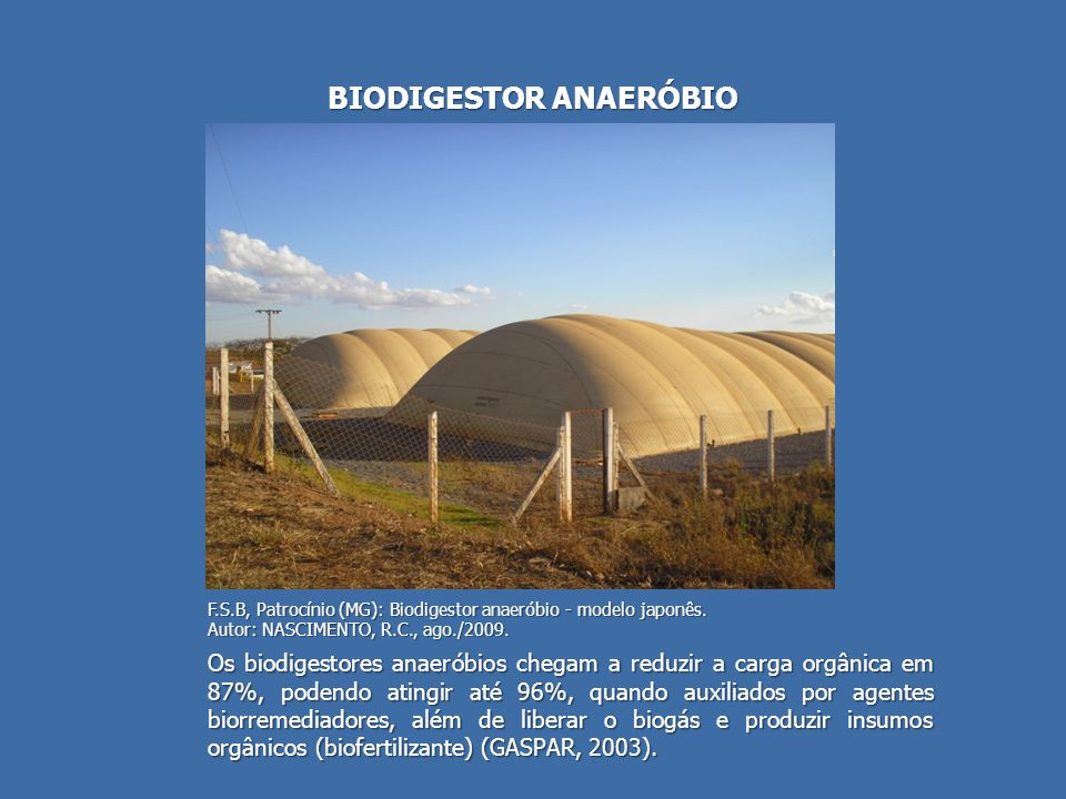BIODIGESTOR ANAERÓBIO
