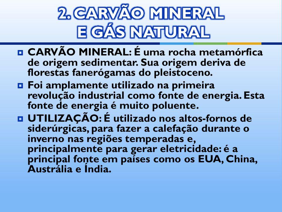 2. CARVÃO MINERAL E GÁS NATURAL