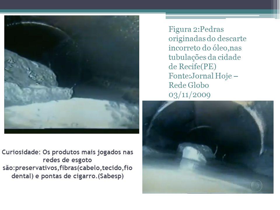 Fonte:Jornal Hoje – Rede Globo 03/11/2009