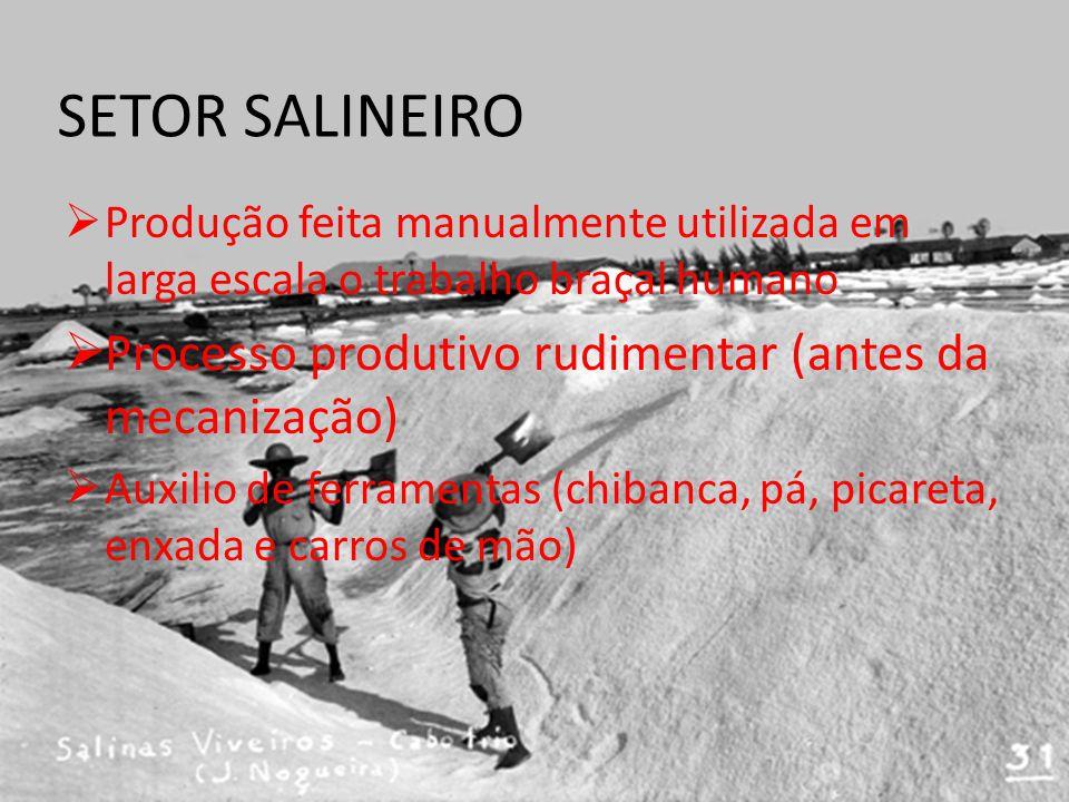 SETOR SALINEIRO Processo produtivo rudimentar (antes da mecanização)