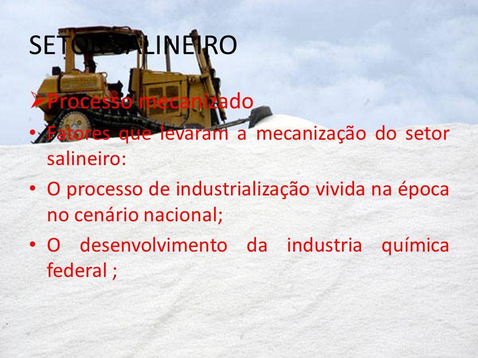 SETOR SALINEIRO Processo mecanizado