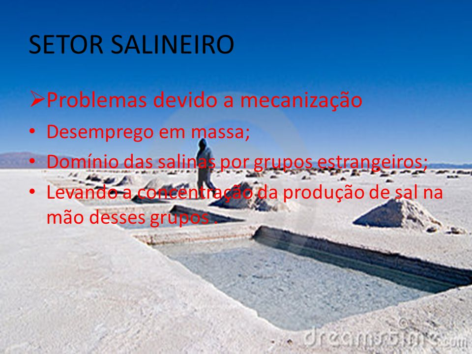 SETOR SALINEIRO Problemas devido a mecanização Desemprego em massa;