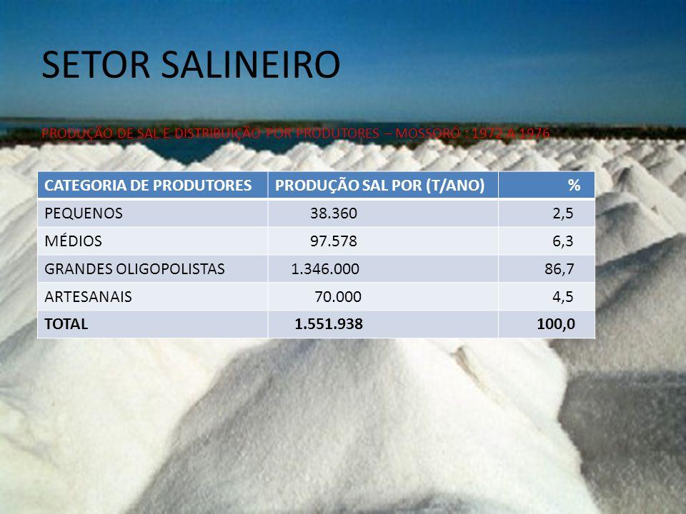 SETOR SALINEIRO CATEGORIA DE PRODUTORES PRODUÇÃO SAL POR (T/ANO) %