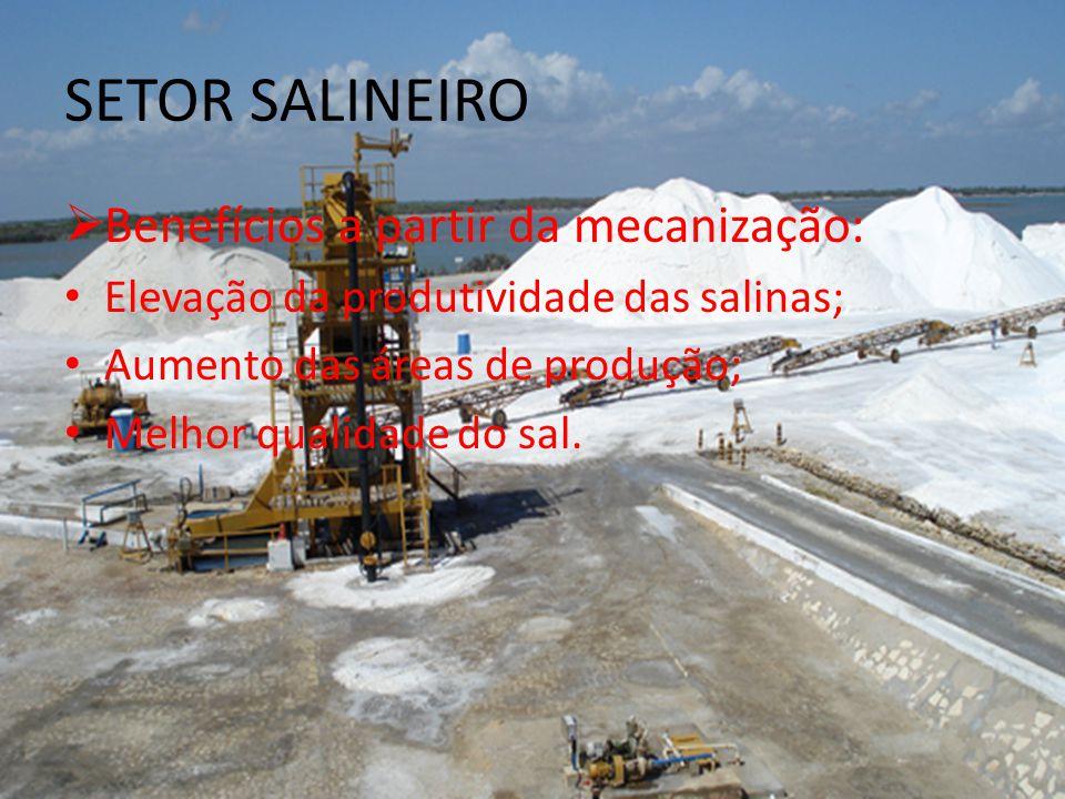 SETOR SALINEIRO Benefícios a partir da mecanização: