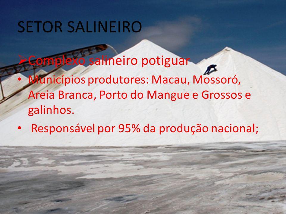 SETOR SALINEIRO Complexo salineiro potiguar