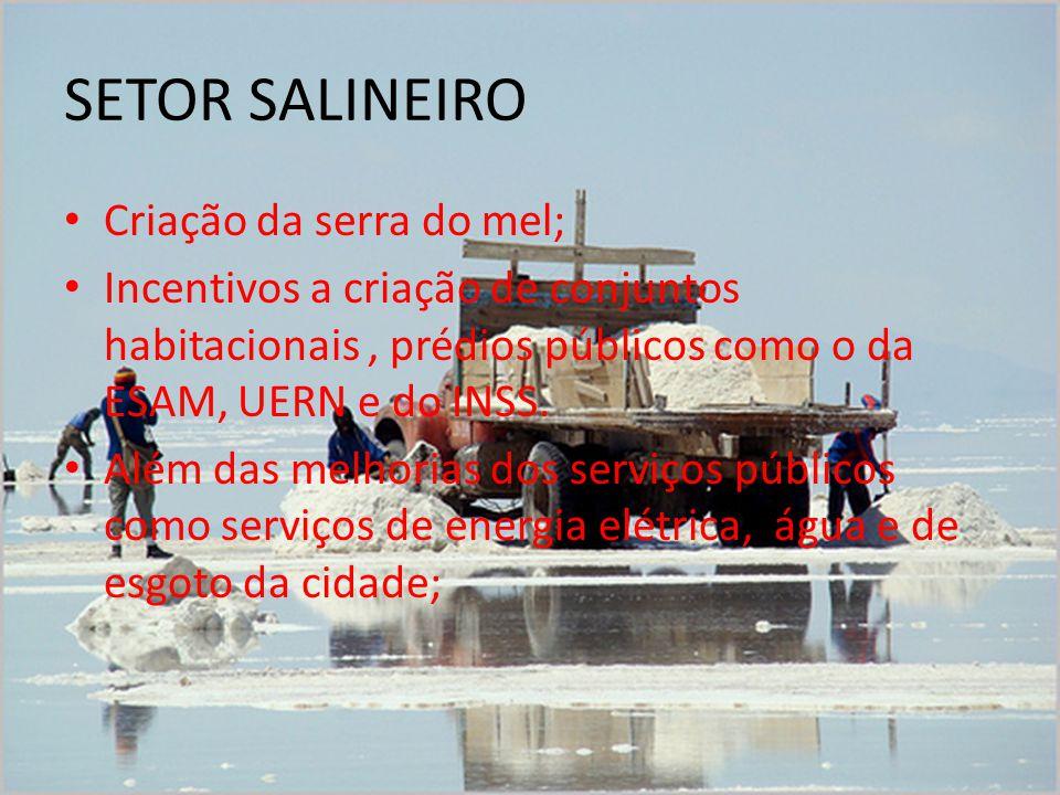 SETOR SALINEIRO Criação da serra do mel;