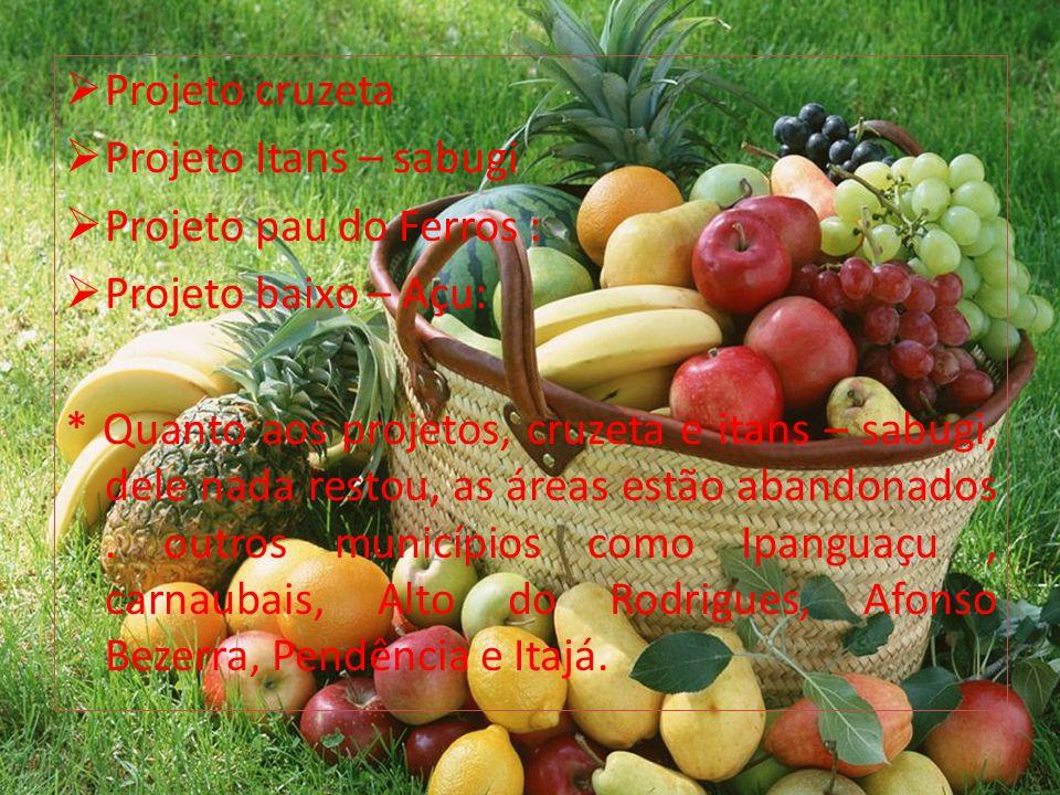 Projeto cruzeta Projeto Itans – sabugi. Projeto pau do Ferros : Projeto baixo – Açu: