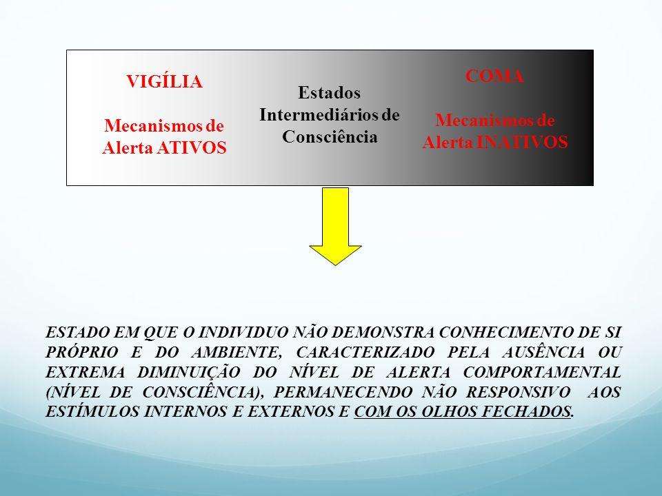 Mecanismos de Alerta INATIVOS VIGÍLIA Mecanismos de Alerta ATIVOS
