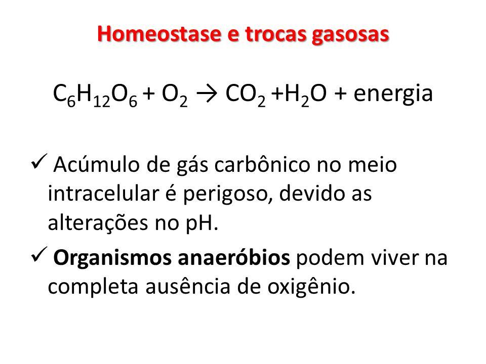 Homeostase e trocas gasosas