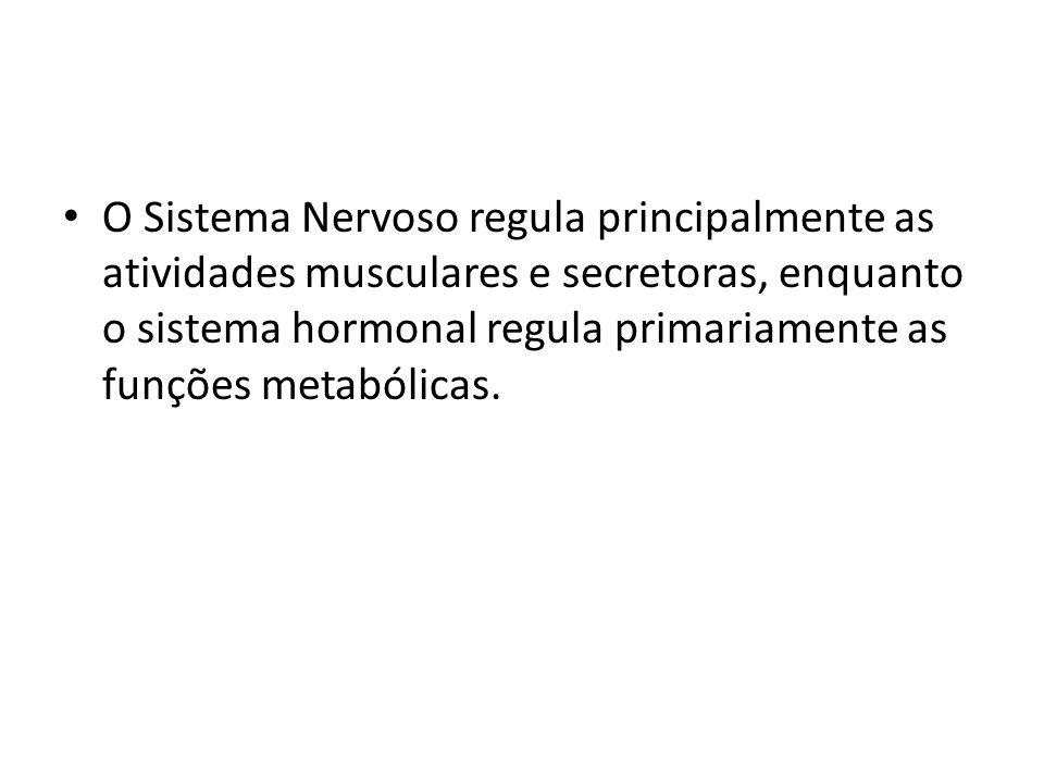 O Sistema Nervoso regula principalmente as atividades musculares e secretoras, enquanto o sistema hormonal regula primariamente as funções metabólicas.
