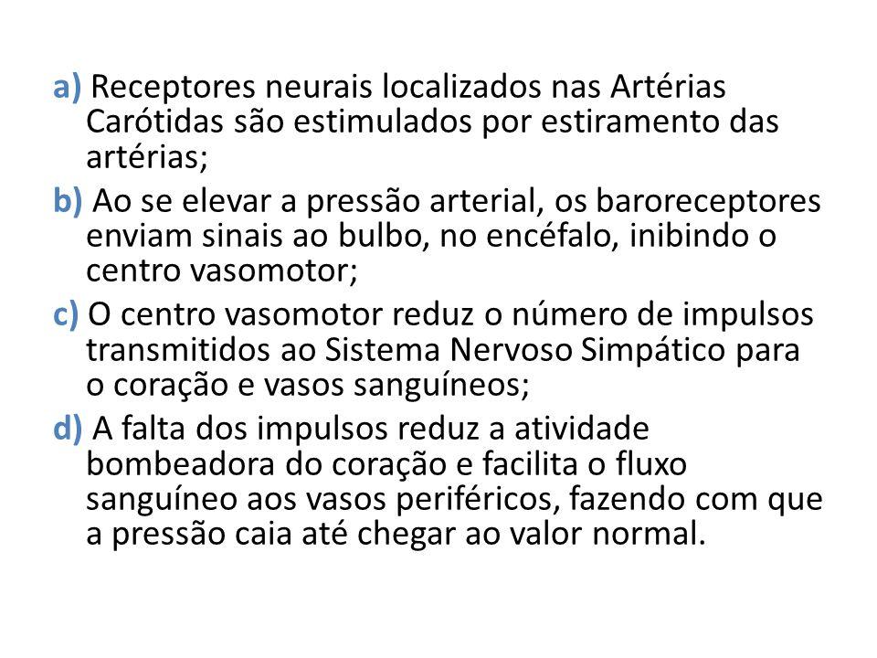 a) Receptores neurais localizados nas Artérias Carótidas são estimulados por estiramento das artérias;