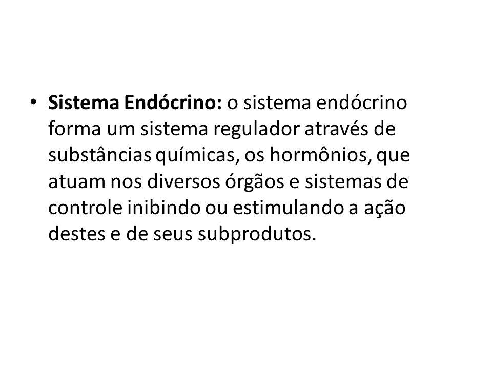 Sistema Endócrino: o sistema endócrino forma um sistema regulador através de substâncias químicas, os hormônios, que atuam nos diversos órgãos e sistemas de controle inibindo ou estimulando a ação destes e de seus subprodutos.