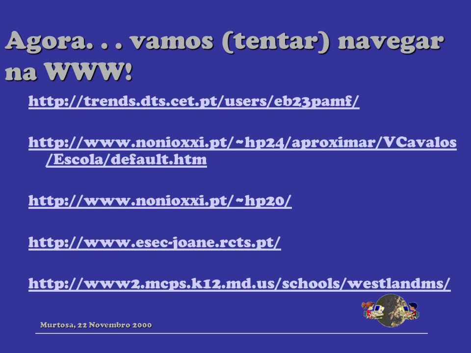 Agora. . . vamos (tentar) navegar na WWW!
