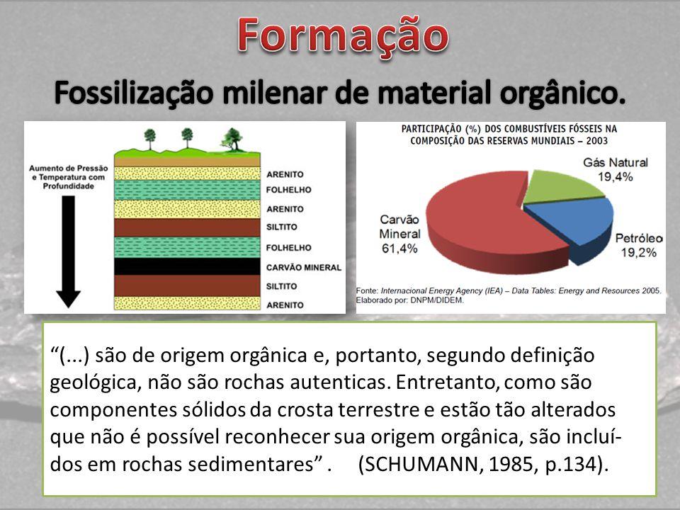 Fossilização milenar de material orgânico.
