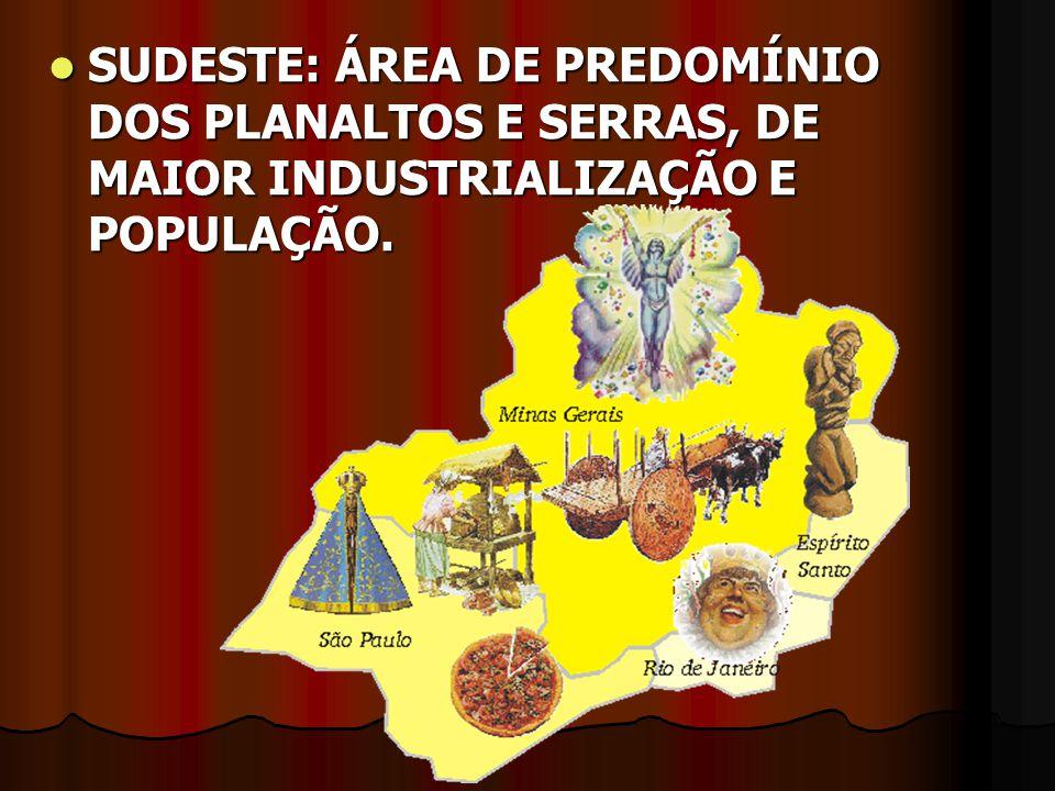 SUDESTE: ÁREA DE PREDOMÍNIO DOS PLANALTOS E SERRAS, DE MAIOR INDUSTRIALIZAÇÃO E POPULAÇÃO.