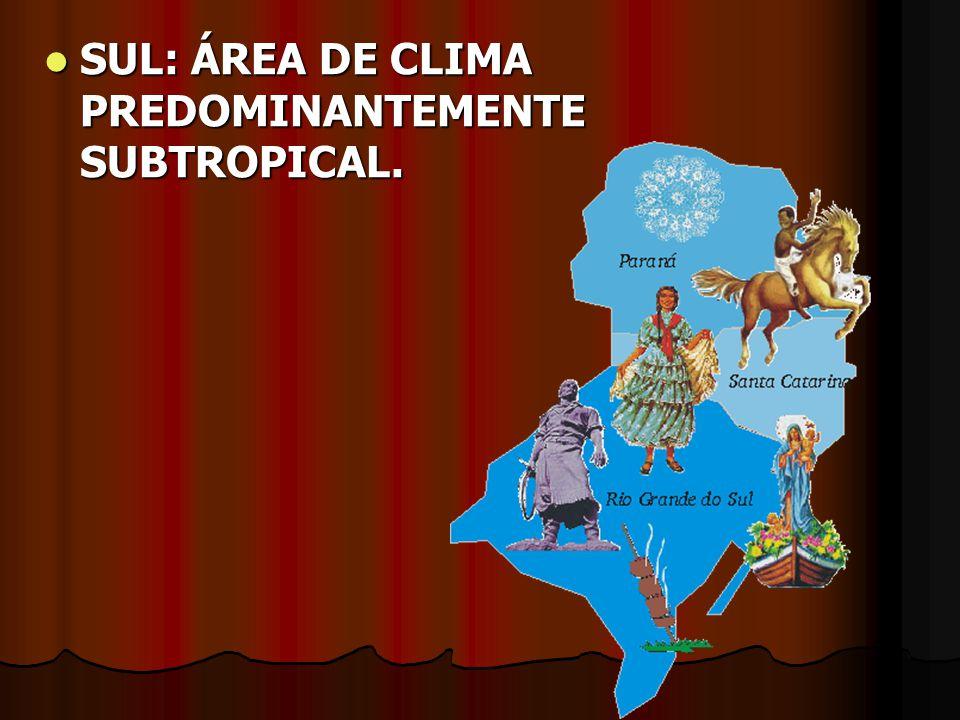 SUL: ÁREA DE CLIMA PREDOMINANTEMENTE SUBTROPICAL.