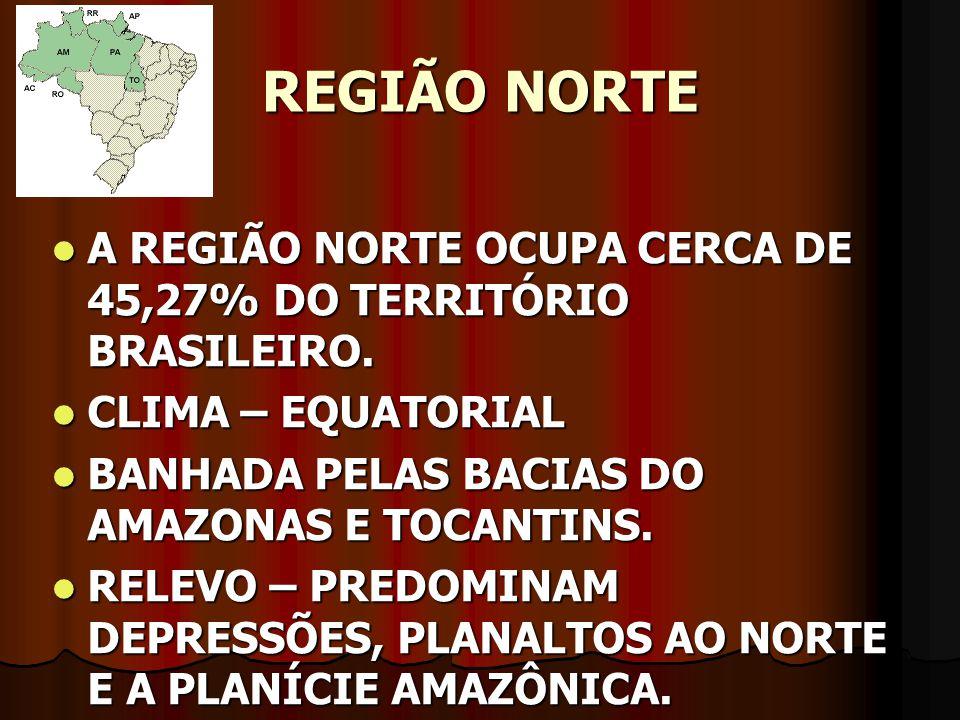 REGIÃO NORTE A REGIÃO NORTE OCUPA CERCA DE 45,27% DO TERRITÓRIO BRASILEIRO. CLIMA – EQUATORIAL. BANHADA PELAS BACIAS DO AMAZONAS E TOCANTINS.