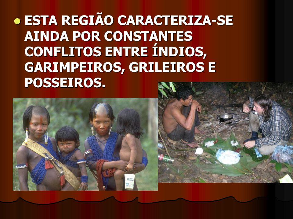ESTA REGIÃO CARACTERIZA-SE AINDA POR CONSTANTES CONFLITOS ENTRE ÍNDIOS, GARIMPEIROS, GRILEIROS E POSSEIROS.