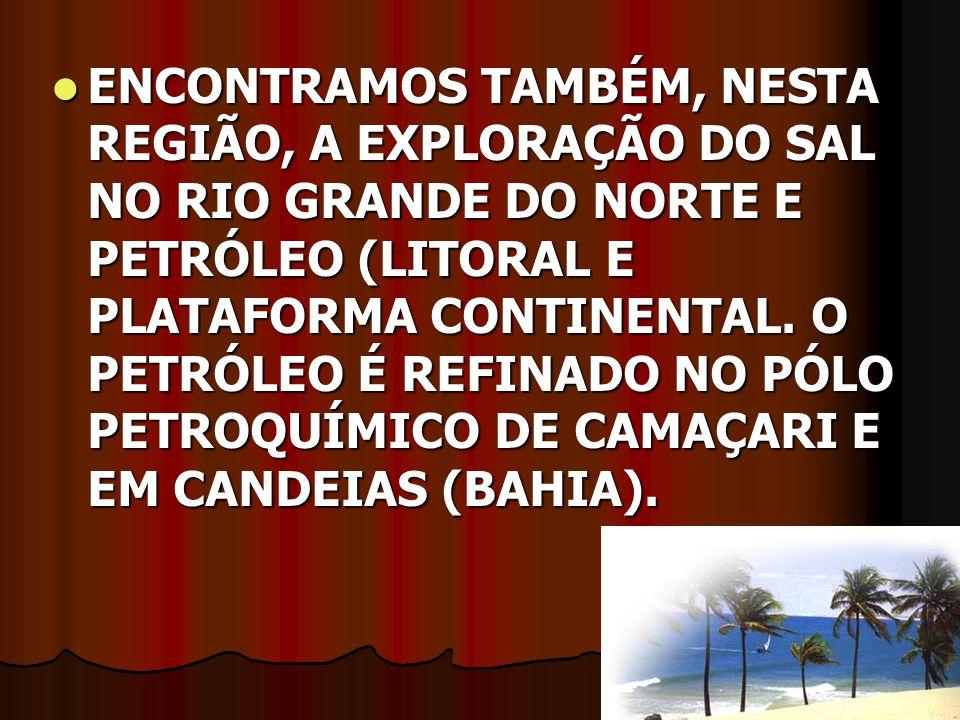 ENCONTRAMOS TAMBÉM, NESTA REGIÃO, A EXPLORAÇÃO DO SAL NO RIO GRANDE DO NORTE E PETRÓLEO (LITORAL E PLATAFORMA CONTINENTAL.