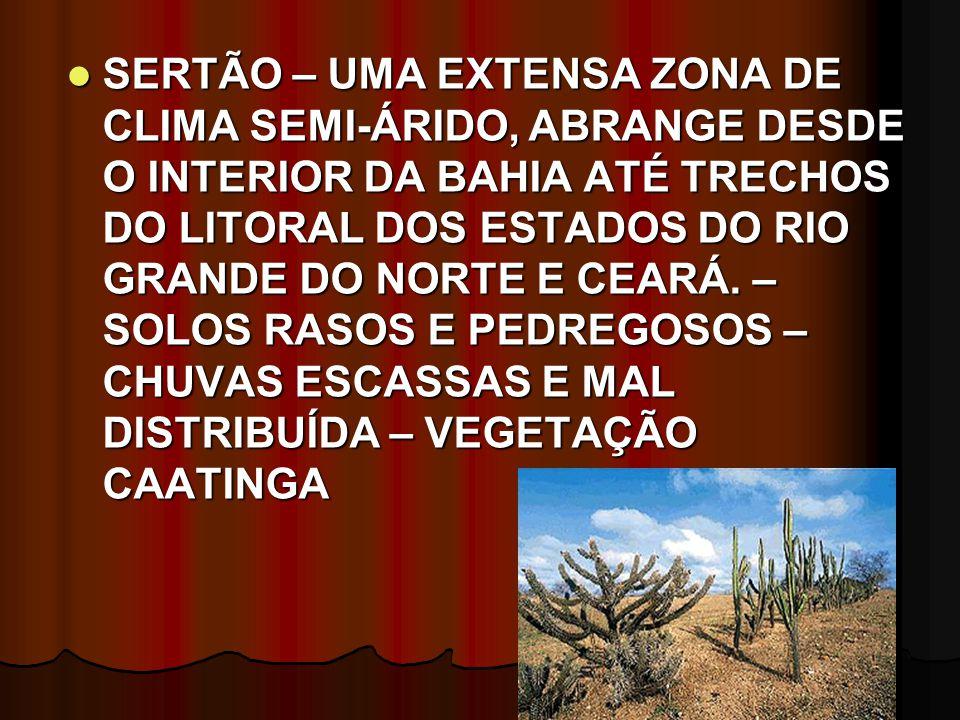 SERTÃO – UMA EXTENSA ZONA DE CLIMA SEMI-ÁRIDO, ABRANGE DESDE O INTERIOR DA BAHIA ATÉ TRECHOS DO LITORAL DOS ESTADOS DO RIO GRANDE DO NORTE E CEARÁ.