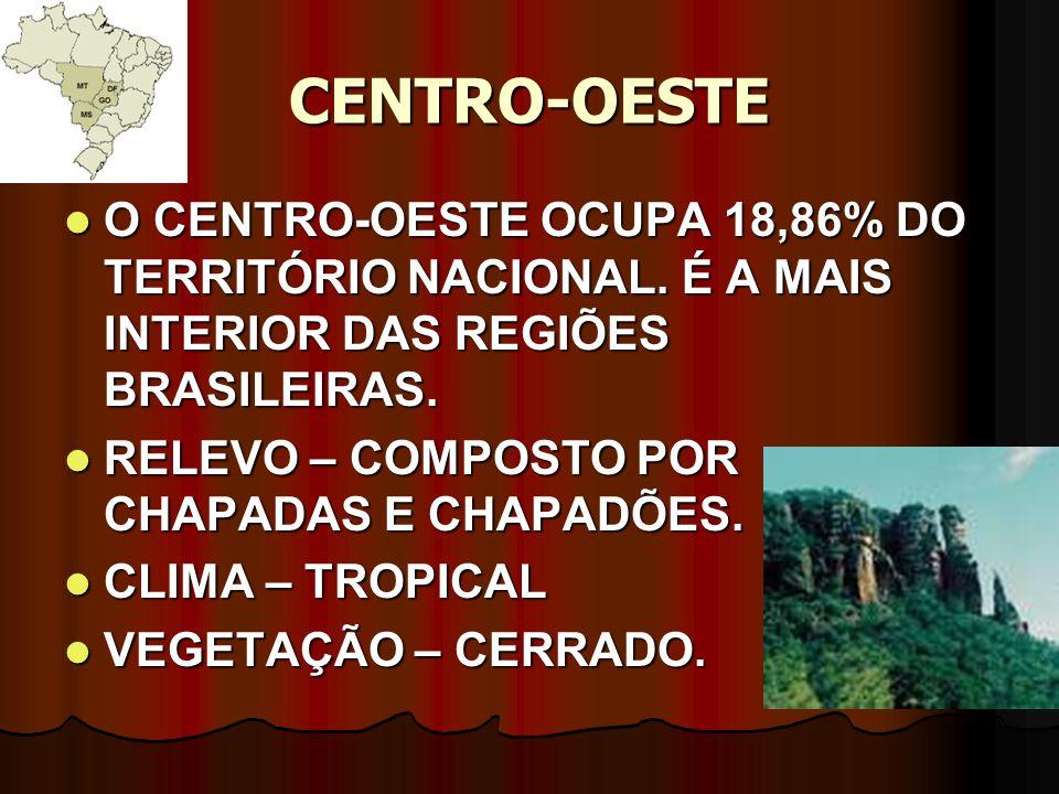 CENTRO-OESTE O CENTRO-OESTE OCUPA 18,86% DO TERRITÓRIO NACIONAL. É A MAIS INTERIOR DAS REGIÕES BRASILEIRAS.