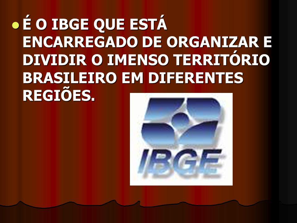 É O IBGE QUE ESTÁ ENCARREGADO DE ORGANIZAR E DIVIDIR O IMENSO TERRITÓRIO BRASILEIRO EM DIFERENTES REGIÕES.