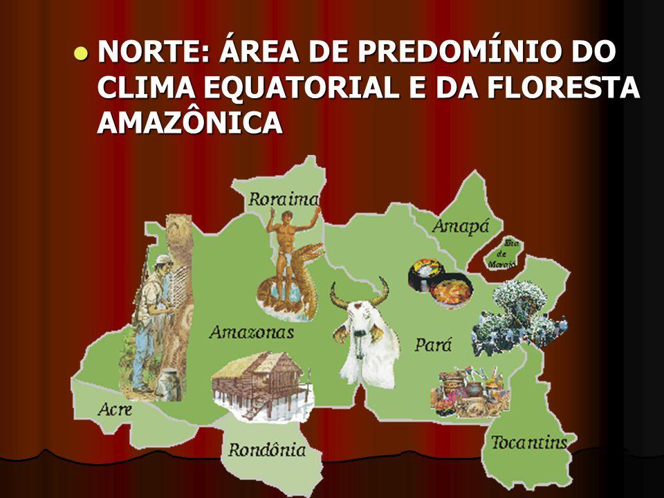 NORTE: ÁREA DE PREDOMÍNIO DO CLIMA EQUATORIAL E DA FLORESTA AMAZÔNICA