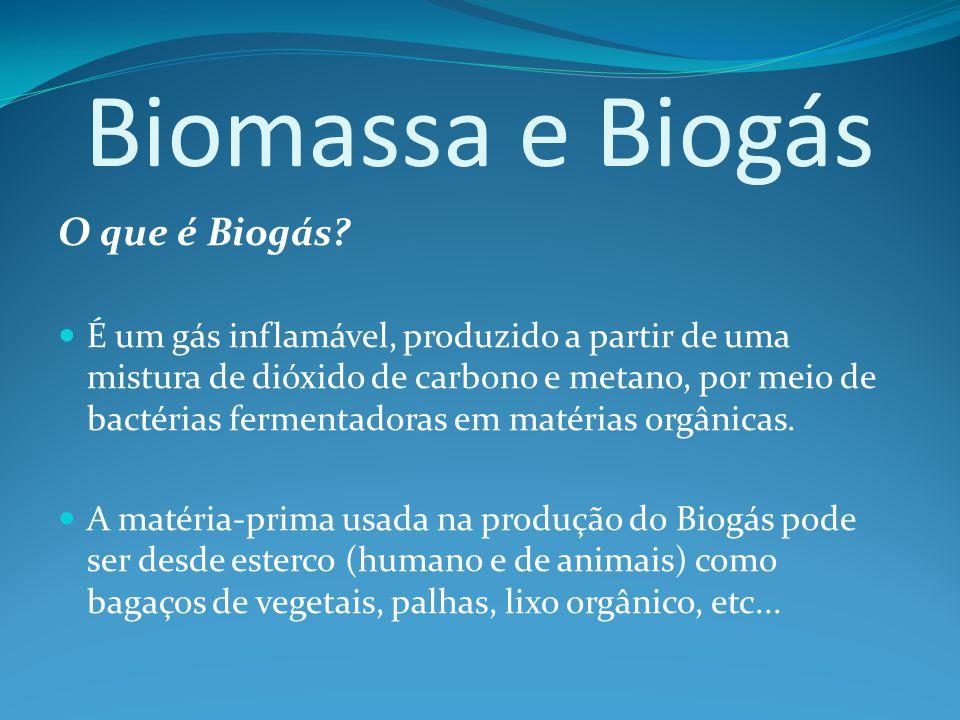 Biomassa e Biogás O que é Biogás