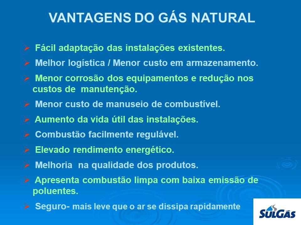 VANTAGENS DO GÁS NATURAL