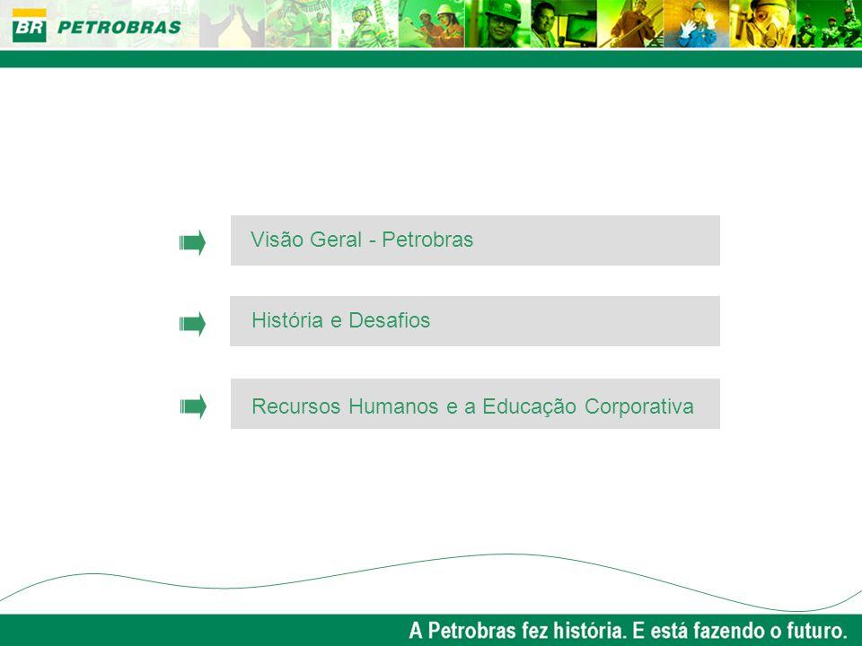 Visão Geral - Petrobras