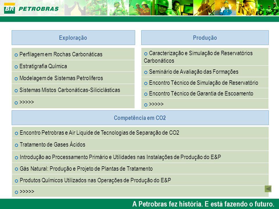 Exploração Produção. Perfilagem em Rochas Carbonáticas. Estratigrafia Química. Modelagem de Sistemas Petrolíferos.