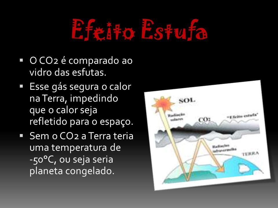 Efeito Estufa O CO2 é comparado ao vidro das esfutas.