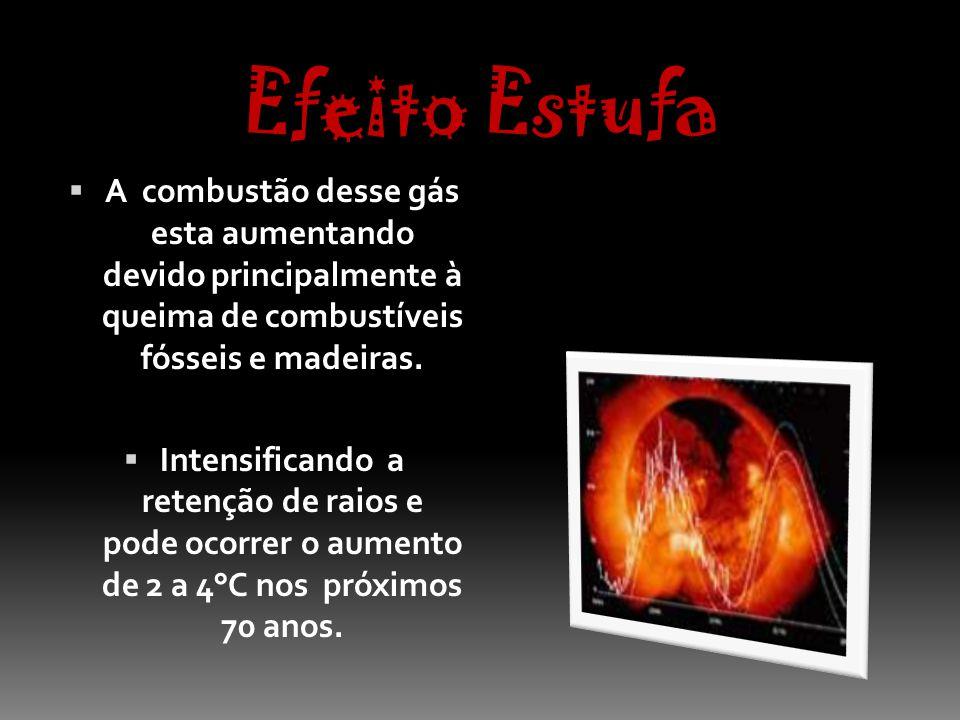 Efeito Estufa A combustão desse gás esta aumentando devido principalmente à queima de combustíveis fósseis e madeiras.
