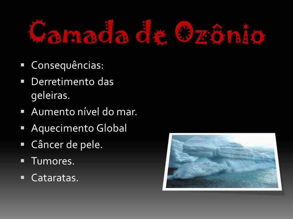 Camada de Ozônio Consequências: Derretimento das geleiras.