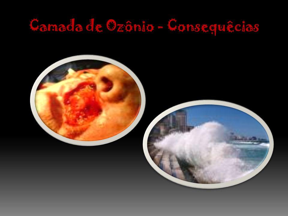 Camada de Ozônio - Consequêcias