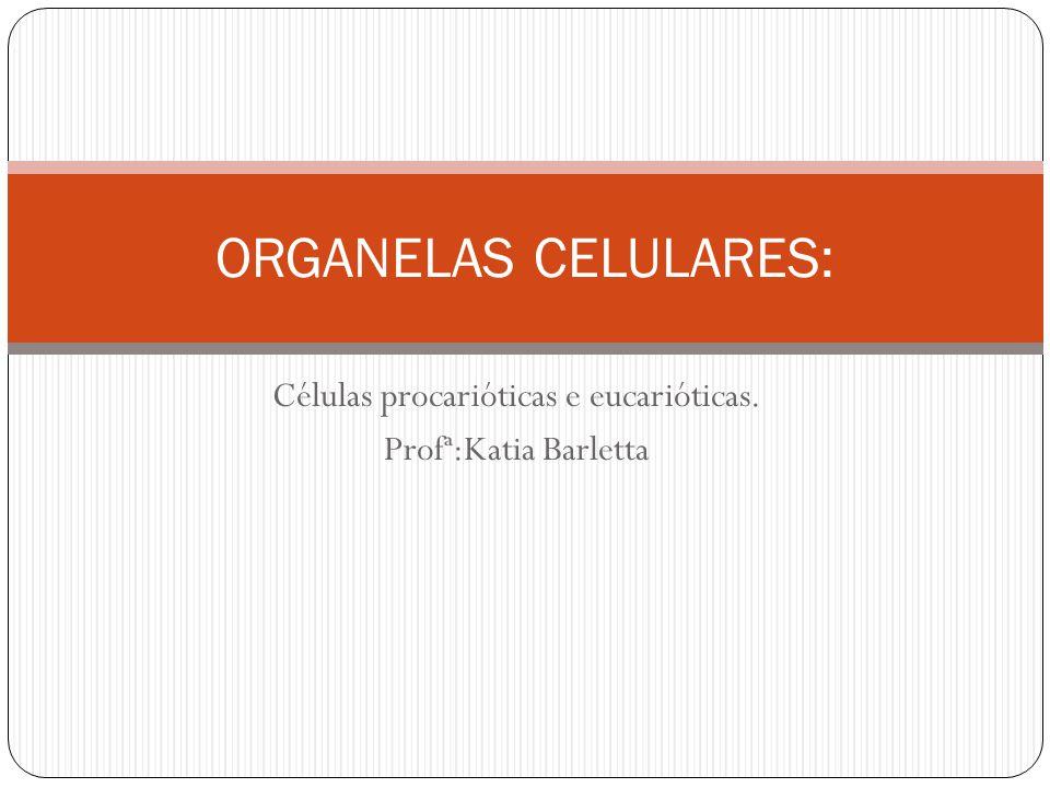 Células procarióticas e eucarióticas. Profª:Katia Barletta