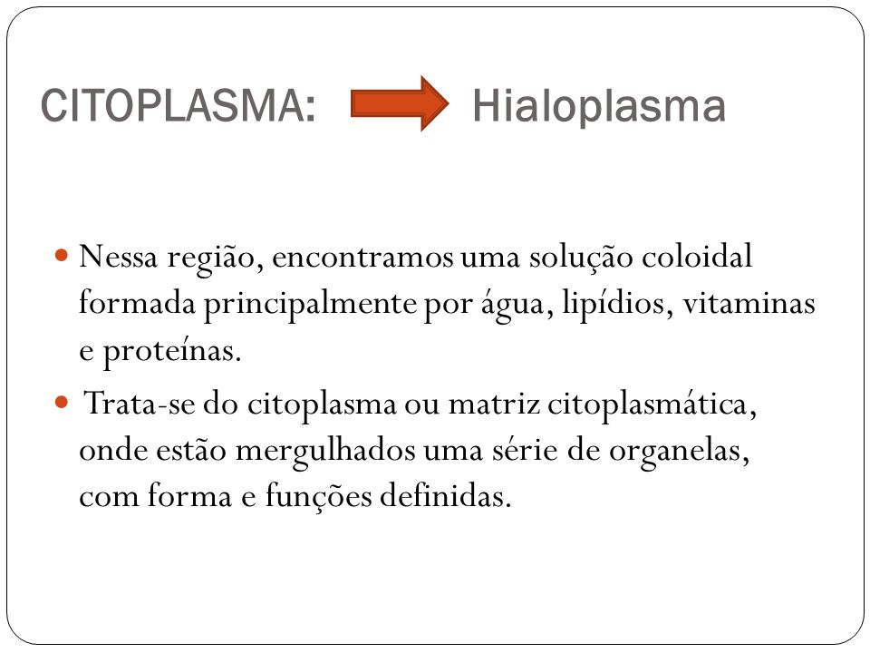 CITOPLASMA: Hialoplasma