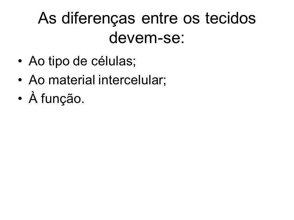 As diferenças entre os tecidos devem-se: