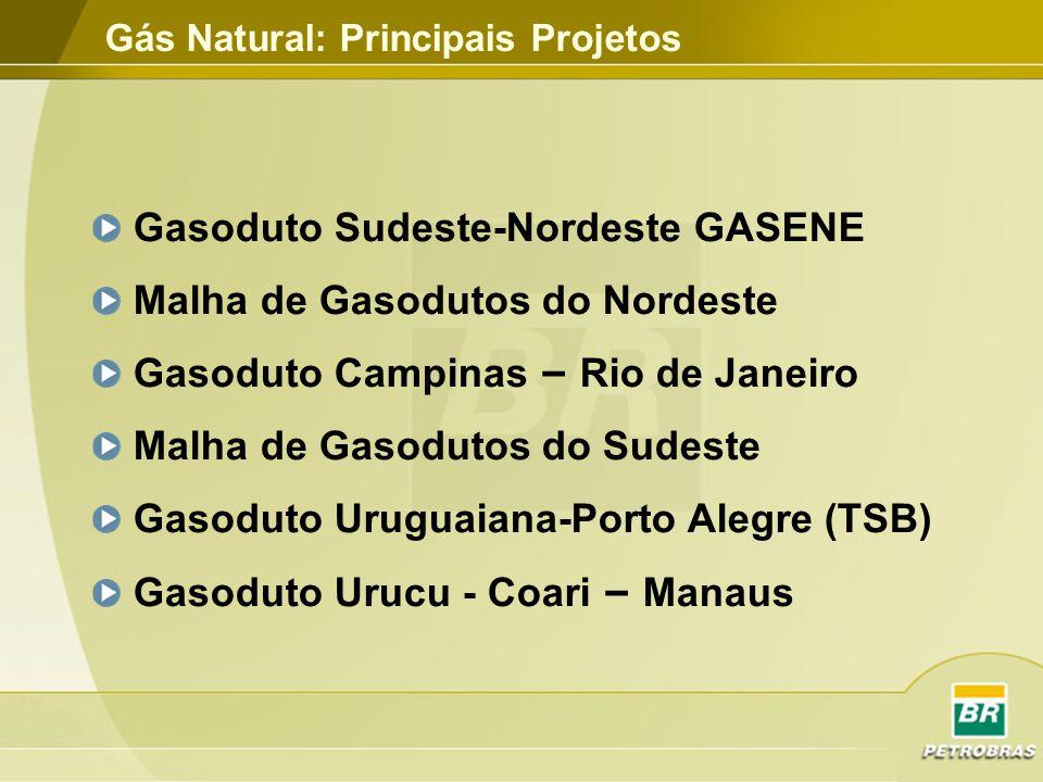 Gasoduto Sudeste-Nordeste GASENE Malha de Gasodutos do Nordeste