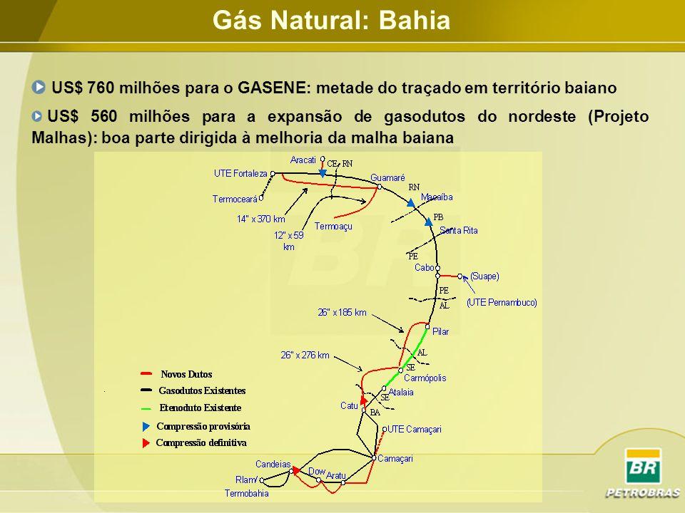 Gás Natural: Bahia US$ 760 milhões para o GASENE: metade do traçado em território baiano.