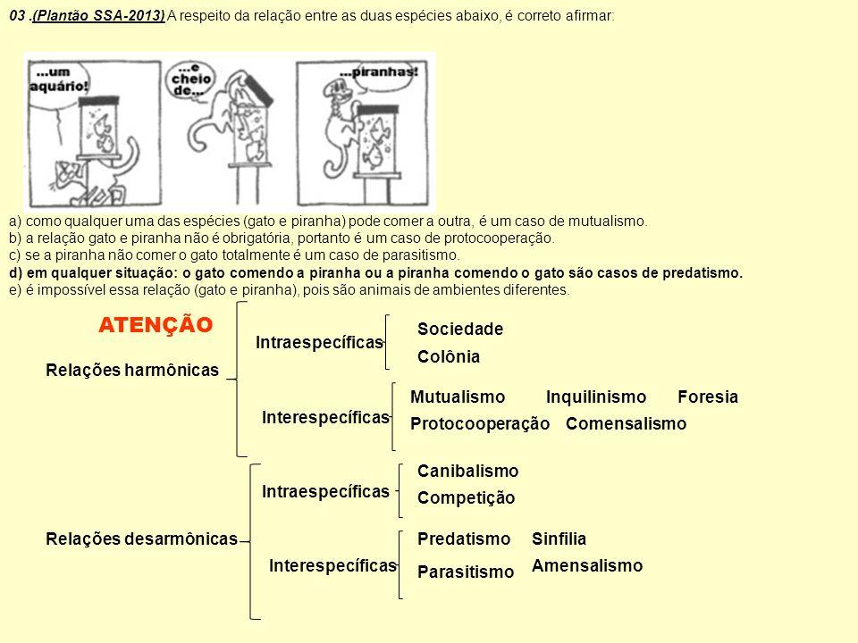 ATENÇÃO Sociedade Intraespecíficas Colônia Relações harmônicas