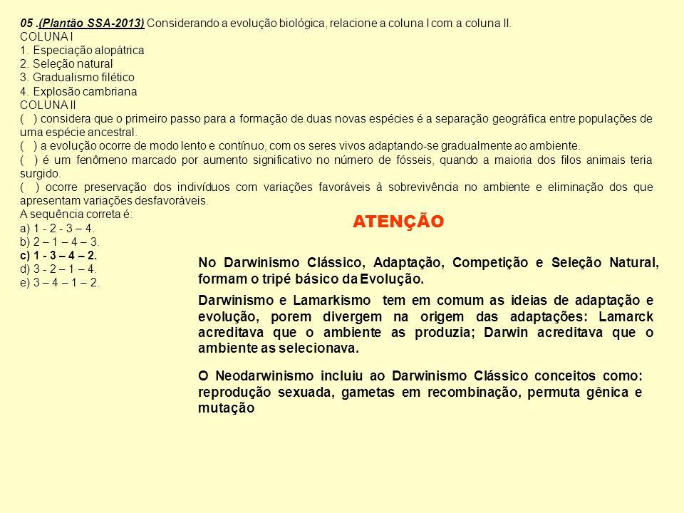 05 .(Plantão SSA-2013) Considerando a evolução biológica, relacione a coluna I com a coluna II.