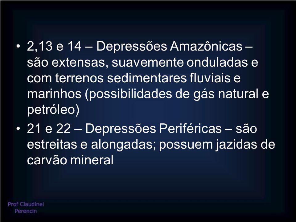 2,13 e 14 – Depressões Amazônicas – são extensas, suavemente onduladas e com terrenos sedimentares fluviais e marinhos (possibilidades de gás natural e petróleo)