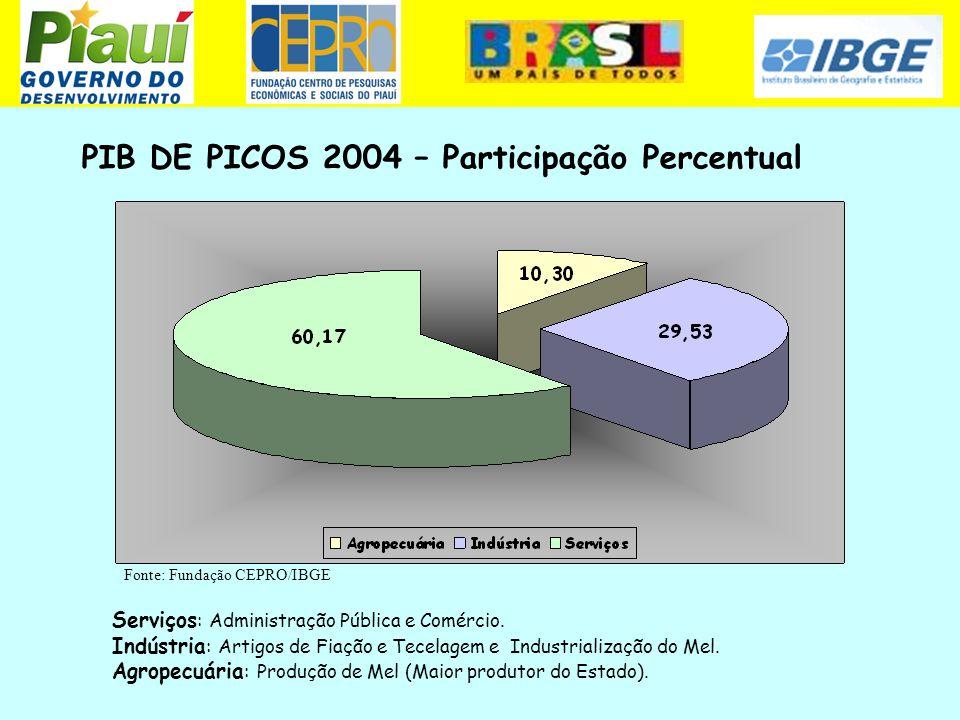PIB DE PICOS 2004 – Participação Percentual