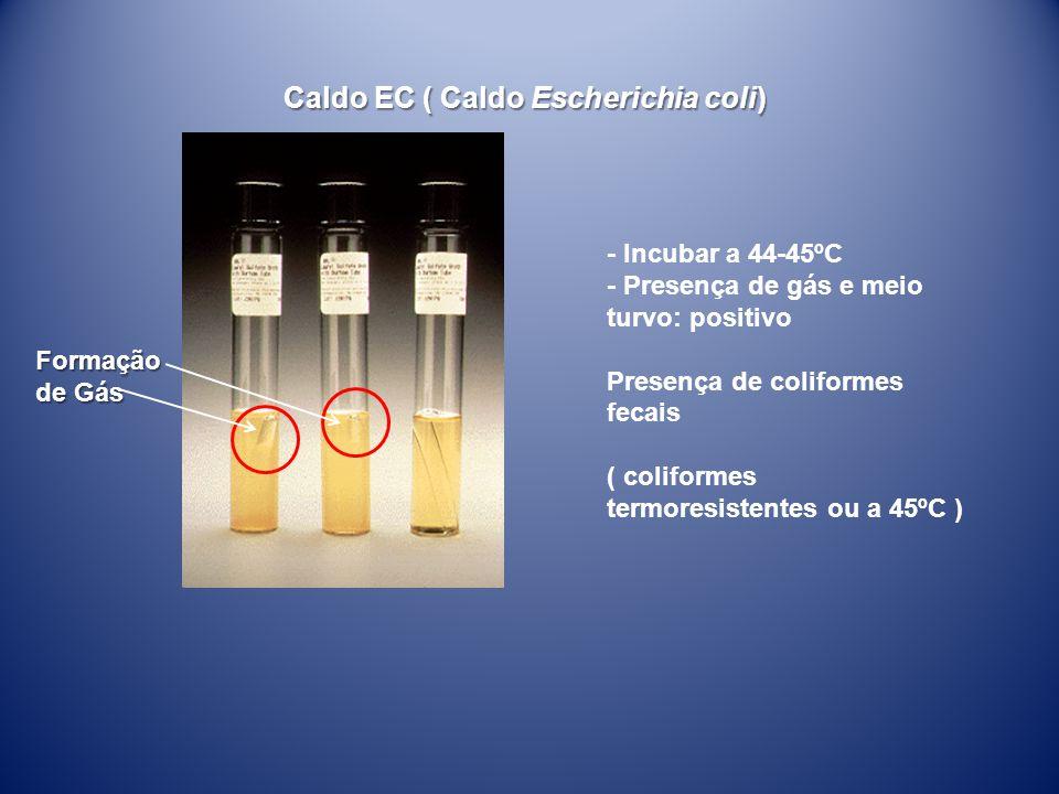 Caldo EC ( Caldo Escherichia coli)