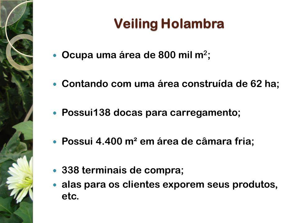 Veiling Holambra Ocupa uma área de 800 mil m2;