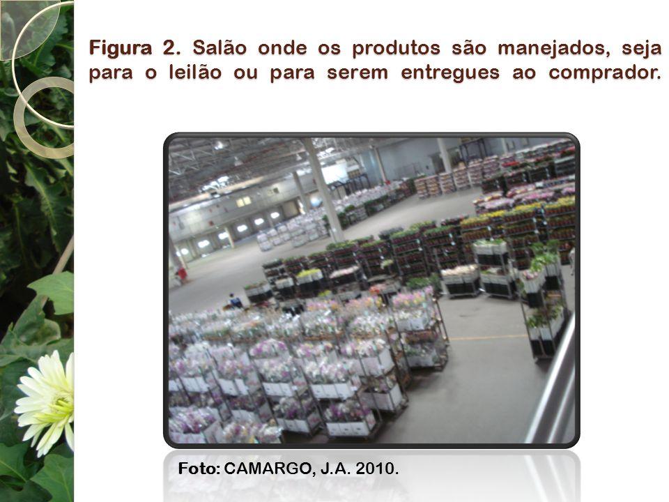 Figura 2. Salão onde os produtos são manejados, seja para o leilão ou para serem entregues ao comprador.