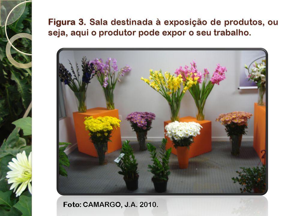 Figura 3. Sala destinada à exposição de produtos, ou seja, aqui o produtor pode expor o seu trabalho.