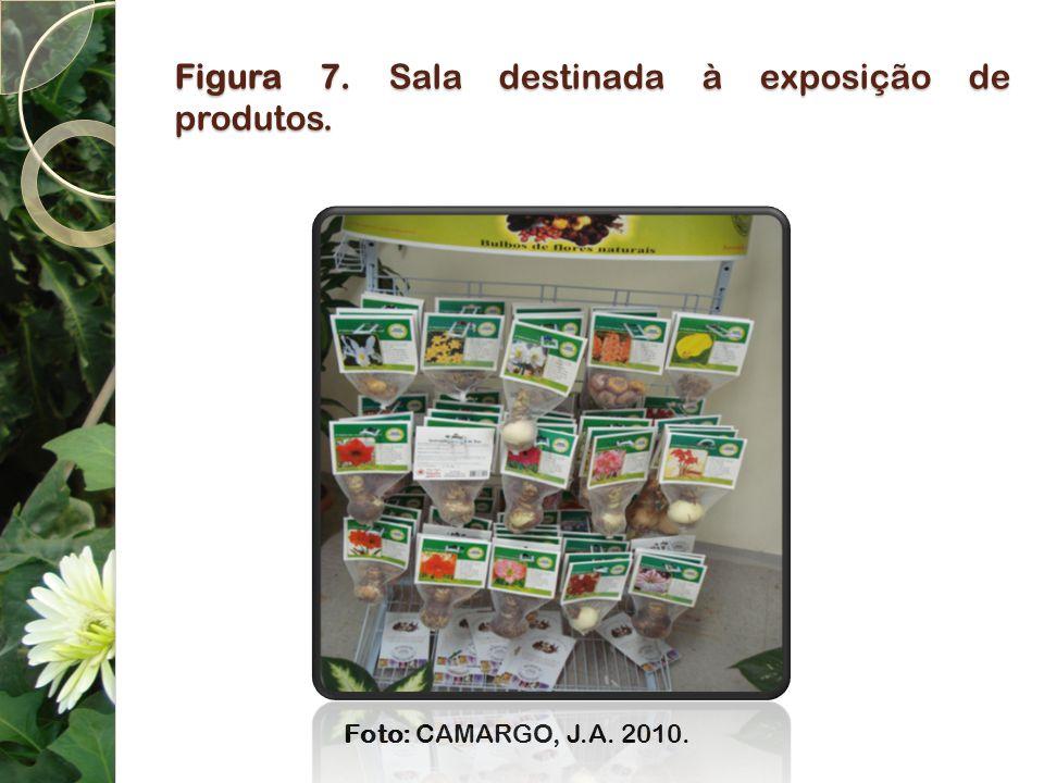 Figura 7. Sala destinada à exposição de produtos.